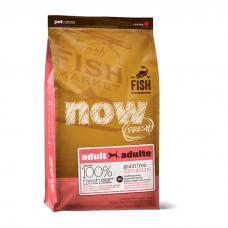NOW FRESH FISH RECIPE с форелью, лососем, сельдью для собак c чувствительным пищеварением